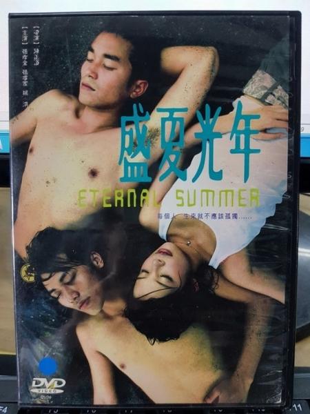 挖寶二手片-Y42-036-正版DVD-華語【盛夏光年】-經典片 楊淇 張孝全 張睿家