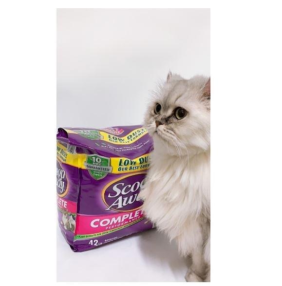紫貓砂 Costco 好市多 Scoop Away 超凝結貓砂 19公斤 貓砂 限宅配