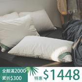 【預購】枕頭 二入[德國專利 物理防螨水洗枕-適中款] 防螨防塵抗過敏  ; 枕心 ; 翔仔居家