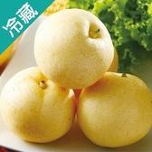 台中新世紀梨/盒(2入/盒)【愛買冷藏】
