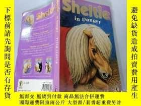 二手書博民逛書店Sheltie罕見in Danger:謝爾蒂有危險Y200392
