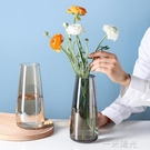 透明玻璃花瓶擺件客廳插花鮮花富貴竹水養玻璃瓶 網紅ins風 一米陽光