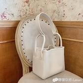 子母包 韓國新款包包子母包清新夏季ins風手提包大容量單肩包 檸檬衣舍