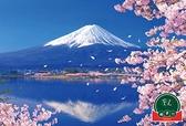 成人拼圖富士山櫻花湖畔300片玩具【福喜行】