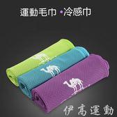 CAMEL 運動毛巾(吸濕排汗) T086 -T601