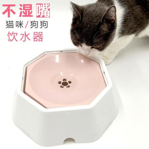 寵物狗狗貓咪喝水器不濕嘴飲水器貓水盆喝水碗狗碗防濺水防濕下巴 秋季新品