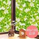日本製造 MEIWA抗UV節能靜電窗貼 (綠葉盈窗) - 46x100公分