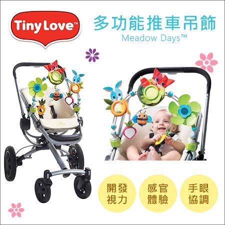 ✿蟲寶寶✿【美國 Tiny Love】Meadow Days™ -多功能吊飾 - 狐狸兔