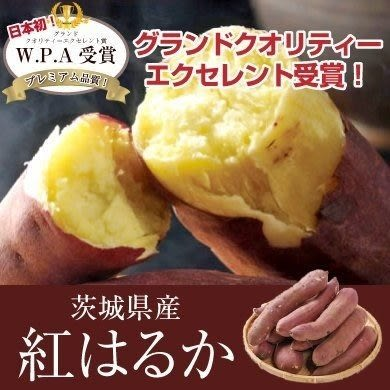 【WANG-全省免運】【最頂級】【生】日本頂級名產JA里浦紅皮地瓜 10公斤【原裝日本箱】