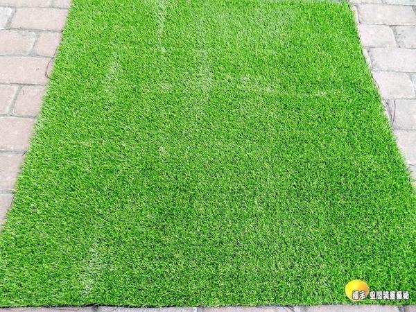優質品 假草皮.人造韓國草坪.高爾夫草皮.大型綠地毯.室外腳踏墊 [魚痴的秘密花園] 破盤超低價