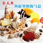 魚缸裝飾貝殼天然海螺貝殼魚缸造景造景水族箱擺件 萬客城