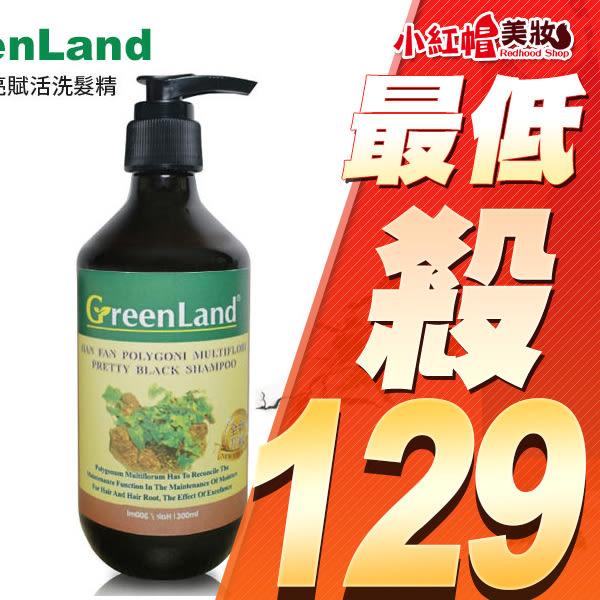 GreenLand 何首烏黑亮賦活洗髮精 300ml 【小紅帽美妝】
