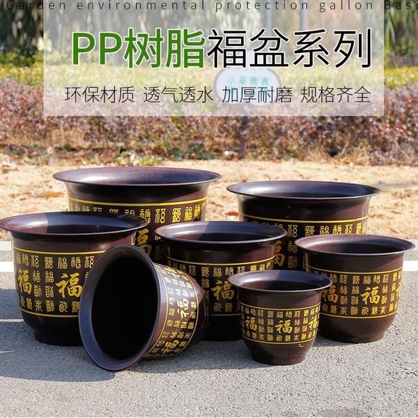 3個裝 環保優質塑料花盆百福果樹加厚庭院盆景圓形