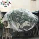 楊梅網罩櫻桃防蟲防風防鳥網水果樹罩多肉蓮霧桃樹羅幔大棚專用罩第一個
