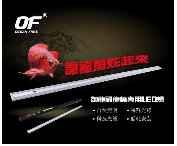 [台中水族 ] 新加坡OF-LED增豔跨燈(紅龍) -88cm/3尺