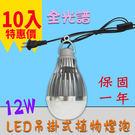 吊掛式 植物生長燈 推薦 10入起訂 12W / 12瓦  E27 LED植物燈泡  -全光譜 JNP016