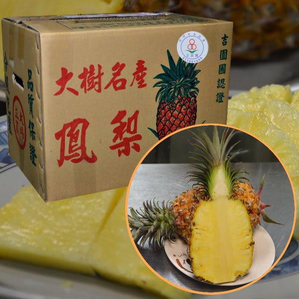 大樹珍愛吉園圃金鑽鳳梨6-9粒20台斤/箱