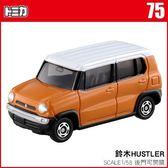 《TOMICA火柴盒小汽車》TM075 鈴木 HUSTLER  ╭★ JOYBUS玩具百貨