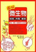 (二手書)圖解微生物──細菌‧病毒‧黴菌