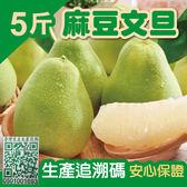 【家購網嚴選】台南麻豆文旦精選5台斤裝(5~7顆)