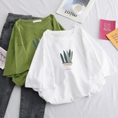 夏季新款韓版女裝夏裝短袖t恤