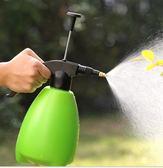 園藝澆花噴壺自動氣壓式家用噴水壺小噴霧器