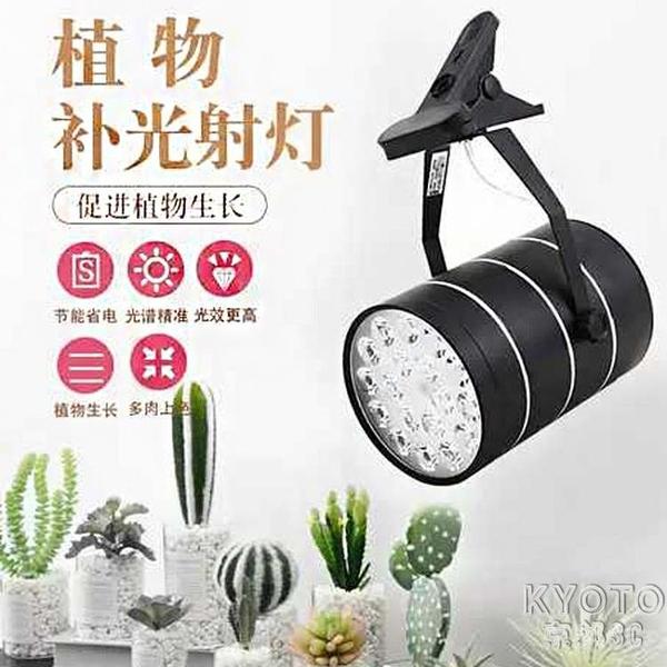 植物生長燈全光譜夾子射燈多肉家用自然仿太陽室內補光燈 【快速出貨】