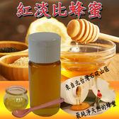 台灣在地獨有紅淡比蜂蜜(700克)~很抱歉,便宜的蜂蜜我們真的生產不出來啦!