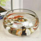 透明玻璃辦公桌創意水培圓形圓球圓型小型烏龜迷你桌面igo
