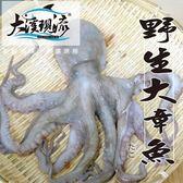 新鮮野生 章魚 / 八爪魚 ( 小尾 500g±10%以下 _ 一公斤 ) 【大溪現流】