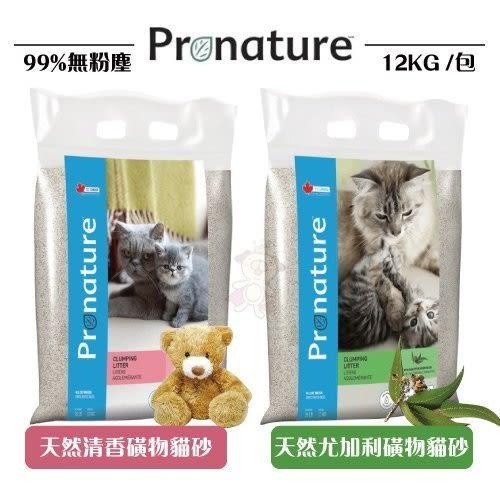 *WANG*【創鮮Pronature】絲蘭抗菌除臭貓砂12kg 超強吸水力
