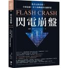 閃電崩盤:一兆美元的真相!全球追捕,史上最神祕的金融罪犯