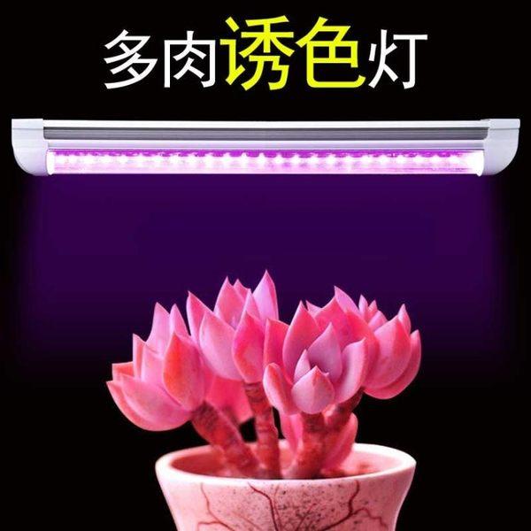 多肉補光燈花卉上色全光譜led家用室內日照光合作用植物生長燈  極有家 ATF
