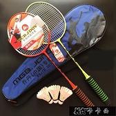 羽毛球拍雙男女家庭情侶初學比賽碳素耐打套裝【牛年大吉】