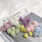 日本進口小蠟菊,大地農園永生花DIY配材點綴材料32052,一小份約5-6個花頭
