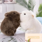 可愛公仔毛絨玩具胖豚鼠抓機布娃娃迷你玩偶【小玉米】