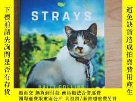 二手書博民逛書店英語原版STRAYS(BRITT罕見COLLINS)精裝本Y26