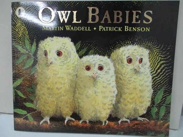 【書寶二手書T1/少年童書_DMV】Owl babies_Martin Waddell, Patrick Benson