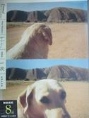 【書寶二手書T4/攝影_NSG】一次-影像和故事_溫德斯/著