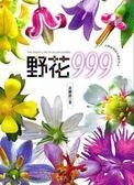 (二手書)野花999