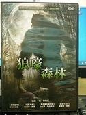 挖寶二手片-0B03-514-正版DVD-電影【狼嚎森林】-麥特柯本寇 丹妮兒羅珊 小比爾歐伯斯特 愛蓮娜莫