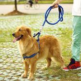 狗鏈子狗狗牽引繩大型中型小型犬狗項圈泰迪金毛遛狗繩子寵物用品【夏日清涼好康購】