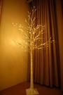 花房里白樺樹LED彩燈ins網紅樹燈臥室布置擺設房間裝飾發光直播燈 星河光年