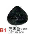 【燙後染髮】奇靈鳥 二代染髮劑 B1-亮黑色 [31077]