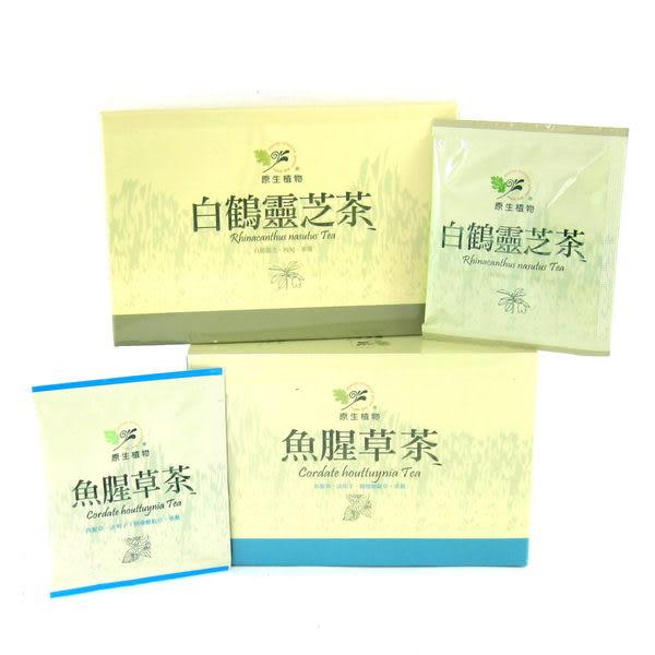 魚腥草茶(20入*5g)【原生應用植物園】