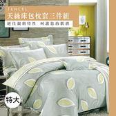 天絲/專櫃級100%.特大床包枕套三件組.葉影微光/伊柔寢飾