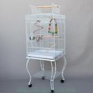 W百貨優質豪華平頂大型鸚鵡籠 大型鳥籠 灰鸚鵡 金太陽小太陽和尚705 優質豪華籠 抽MY~440