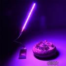 植物補光燈 USB led多肉紅藍燈 室內仿太陽光補光燈 全光譜 花卉【全館免運】