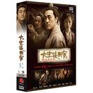 大宋提刑官(1~28集) DVD ( 何...