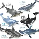 軟膠仿真大號抹香鯨?魚虎鯨?海豚